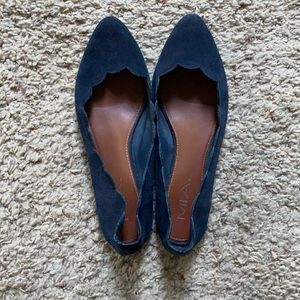 Navy Scalloped Suede Flats